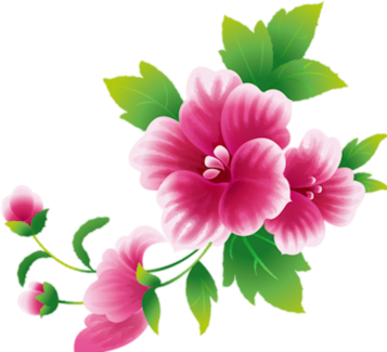 Index of userstbalzeflowerpng art pink flwsg mightylinksfo