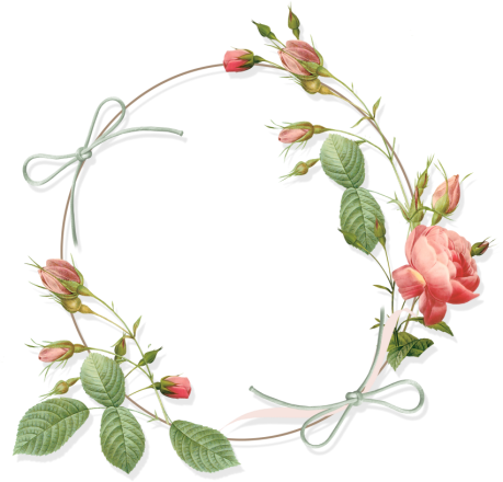 Circle Frame Png Circle Rose Frame Png